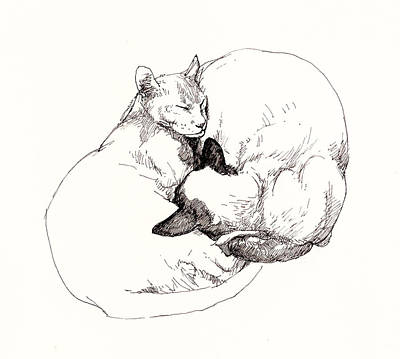 Pussy Drawing - Chinky And Chang by Roz McQuillan