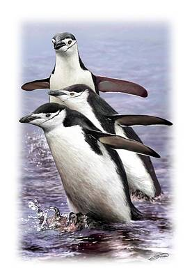 Digital Art - Chinstrap Penguins 1 by Owen Bell