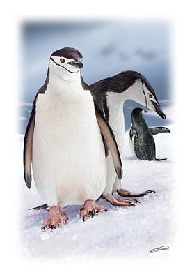 Digital Art - Chinstrap Penguins 2 by Owen Bell