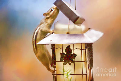 Photograph - Chipmunk  At The Feeder 1 Nursery Triptych by Eleanor Abramson
