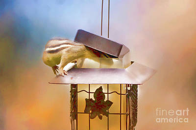 Photograph - Chipmunk At The Feeder 2 Nursery Triptych  by Eleanor Abramson