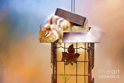 Photograph - Chipmunk At The Feeder 3 Nursery Triptych  by Eleanor Abramson