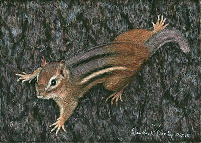 Painting - Chipmunk Barking Down A Tree by Susan Donley