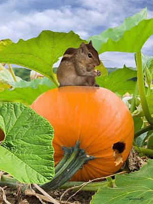 Digital Art - Chipmunk In Pumpkin Patch by IM Spadecaller