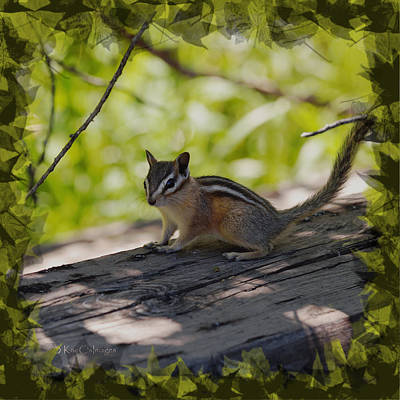 Digital Enhancement Photograph - Chipmunk In The Shade by Kae Cheatham