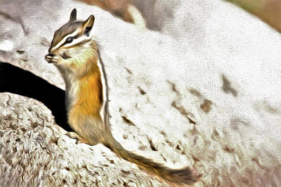 Photograph - Chipmunk Munch by Lana Trussell