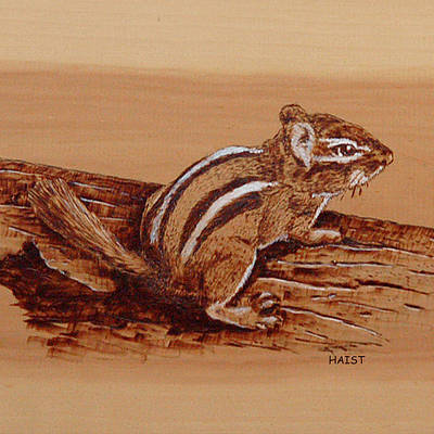 Pyrography - Chipmunk Pillow/bag by Ron Haist