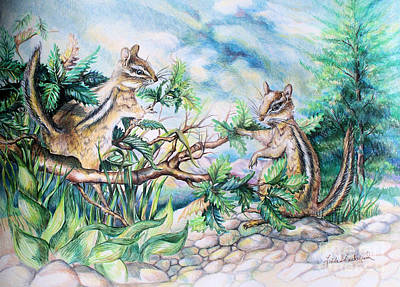 Drawing - Chipmunks by Linda Shackelford