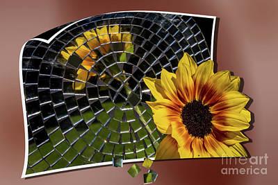 Photograph - Chipped Mosaic by Deborah Klubertanz