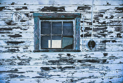 Photograph - Chipped Paint by Colleen Kammerer