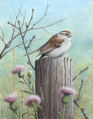 Wavra Wall Art - Painting - Chipping Sparrow On A Fence Post by Robert Wavra