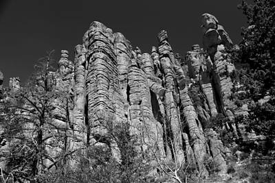 Photograph - Chiricahua Nat Monument Tuft 2 Bw by Mary Bedy