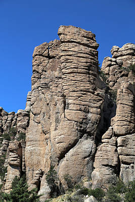 Photograph - Chiricahua Nat Monument Tuft 3 by Mary Bedy