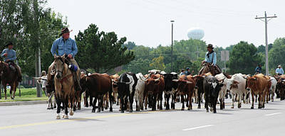 Photograph - Chisholm Trail Cattle Drive 2007 by Toni Hopper