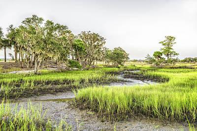 Photograph - Chisolm Island - Low Tide by Scott Hansen
