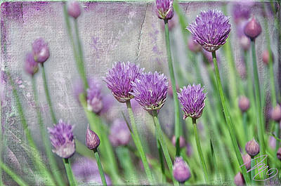 Chives In Texture Art Print
