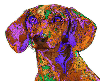Dachshund Digital Art - Chloe. Pet Series by Rafael Salazar