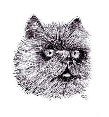 Drawing - Chloe  by Vicki Thompson