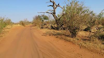 Photograph - Chobe National Park  by Jennifer Wheatley Wolf