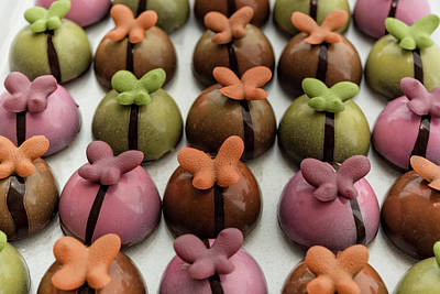 Photograph - Chocolate Butterflies by Sabine Edrissi