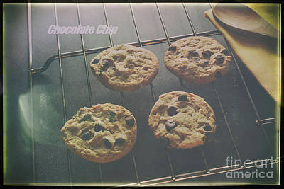 Photograph - Chocolate Chip by Jimmy Ostgard