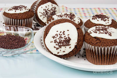 Photograph - Chocolate Cupcakes With Buttercream Icing And Sprinkles by Vizual Studio