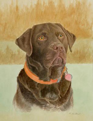 Chocolate Labrador Retriever Painting - Chocolate Lab by Phyllis Tarlow