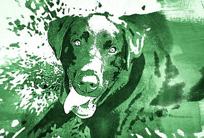 Photograph - Chocolate Lab - Wcgreen by Joye Ardyn Durham