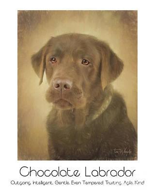 Chocolate Labrador Digital Art - Chocolate Labrador Poster by Tim Wemple
