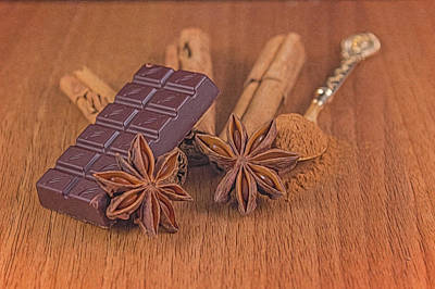Chocolate Spices Art Print by Angela Aird