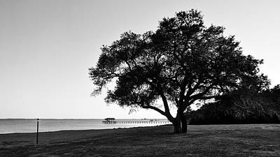 Photograph - Choctawatchee Bay - Florida by Glenn McCarthy Art and Photography
