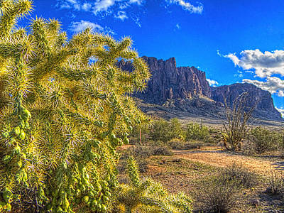 Photograph - Cholla Among The Superstition Mountains by Roger Passman