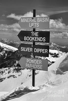 Photograph - Choose Your Own Snowbird Adventure Black And White by Adam Jewell