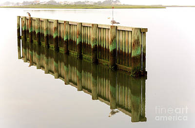 Photograph - Choosing Sides At Long Beach Island by John Rizzuto