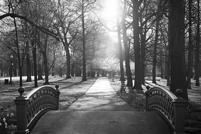 Photograph - Chosen Path by Scott Rackers