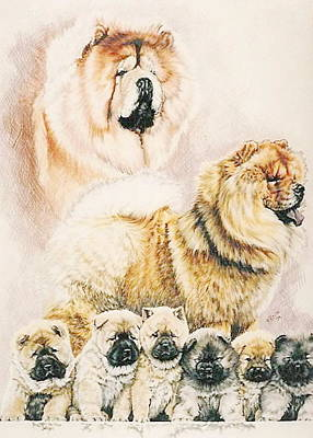 Drawing - Chow Collage by Barbara Keith