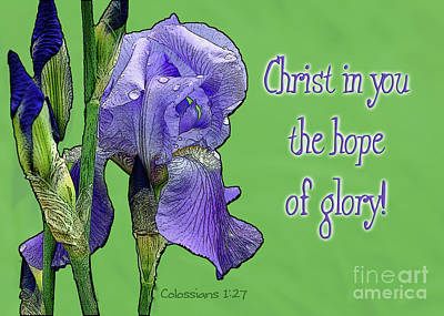 Photograph - Christ In You The Hope Of Glory by Robin Clifton