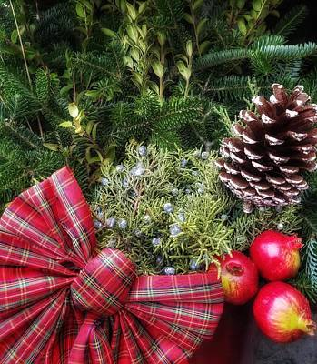 Photograph - Christmas Arrangement by Mary Capriole