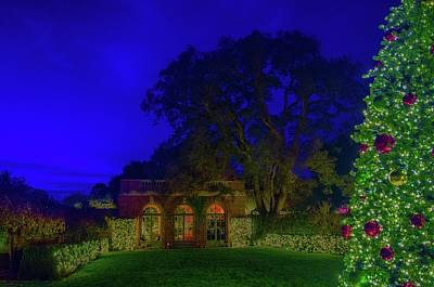 Photograph - Christmas At Filoli by Patricia Dennis