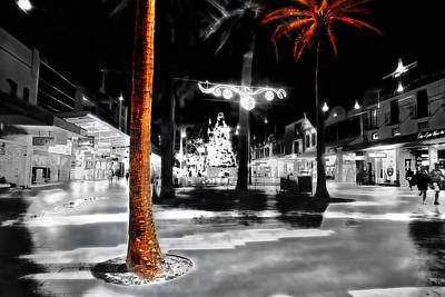 Photograph - Christmas At Manly by Miroslava Jurcik