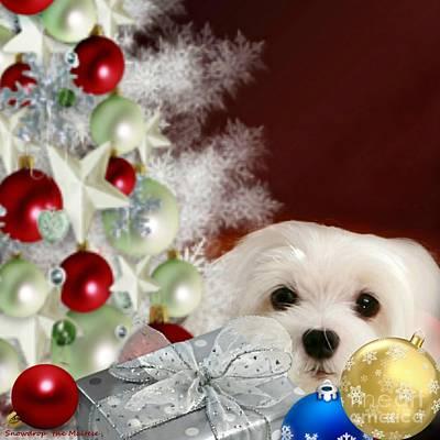 Dog Mixed Media - Christmas Baubles by Morag Bates