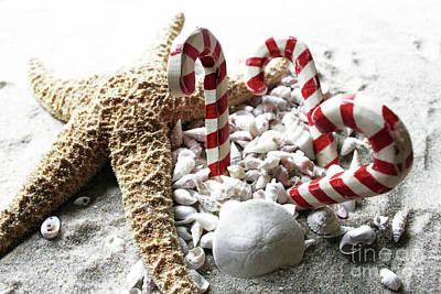 Photograph - Christmas Beach Star by Mary Haber