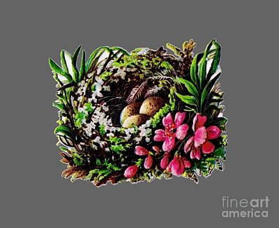 Drawing - Christmas Birds Nest Painting by R Muirhead Art