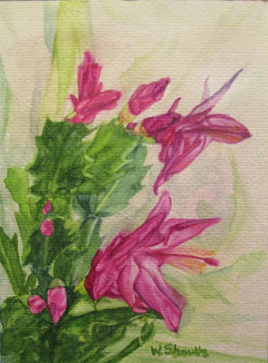 Painting - Christmas Cactus by Wendy Shoults