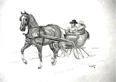 Country Christmas Drawings