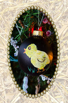 Photograph - Christmas Chick by Donna Brown