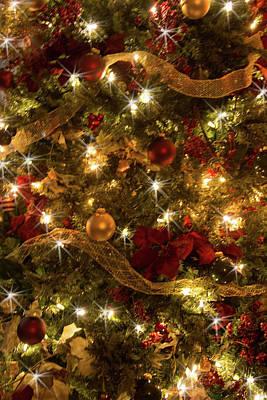 Photograph - Christmas Decor by Pamela Williams