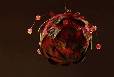 Photograph - Red, Leafy And Playful  by Yvonne Wright