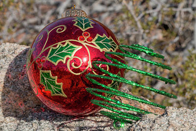 Photograph - Christmas Decorations In The Desert by Teresa Wilson