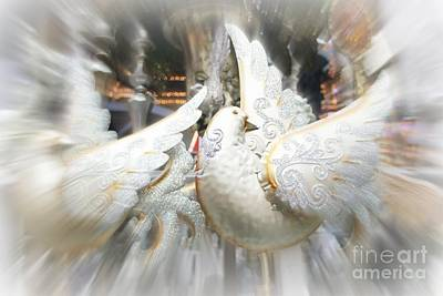 Photograph - Christmas Doves by Jenny Revitz Soper